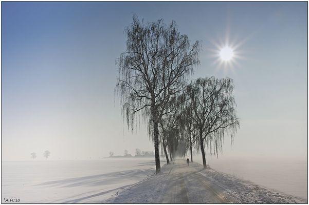 """Winterspaziergang"""