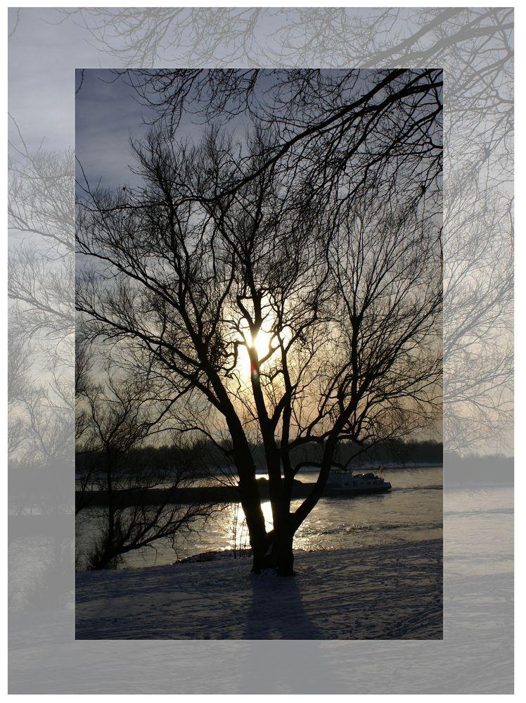 winterspaziergang am rhein von engler petra