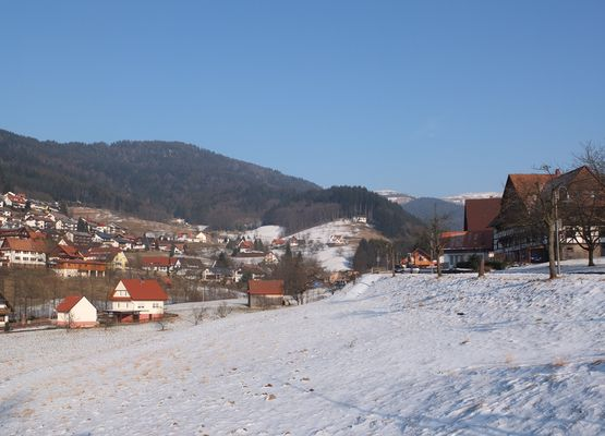 Winterspaziergang am Sonntag im nördlichen Schwarzwald II