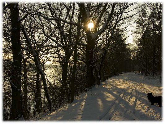 Winterspaziergang an der Elbe