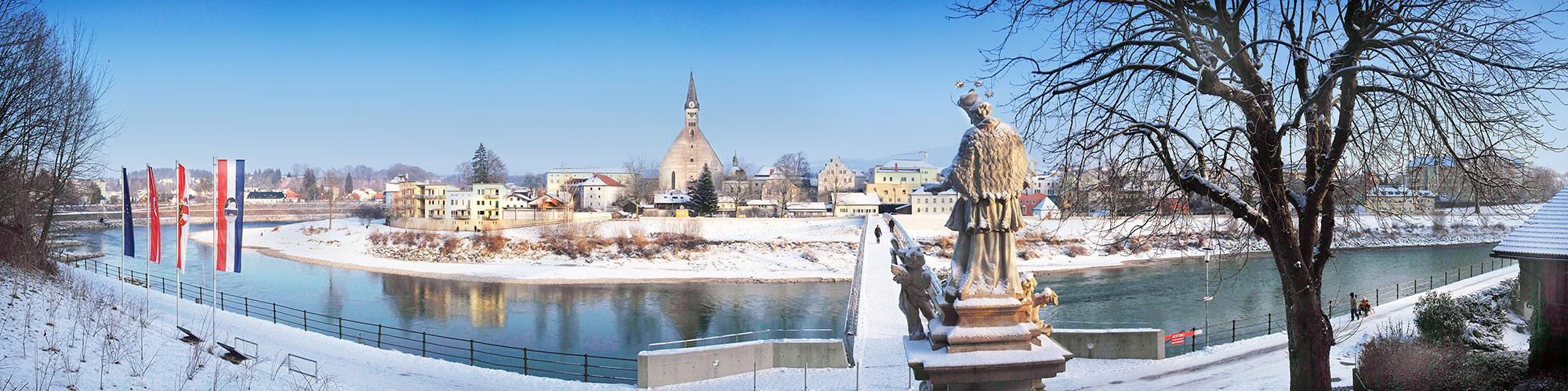 Winterspaziergang an der Salzach (3)