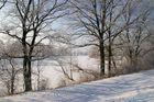 Winterspaziergang auf der Mulde