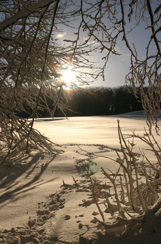 Winterspaziergang auf der schwäbischen Alb