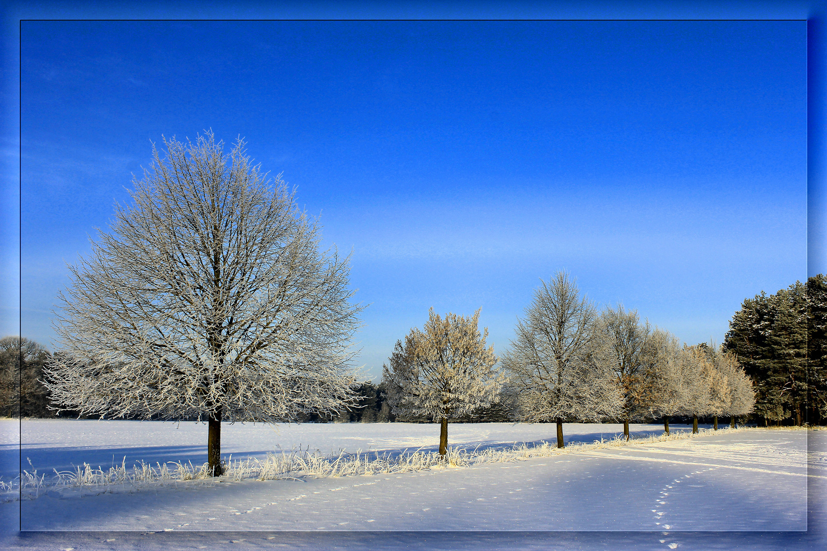 --Winterspaziergang --