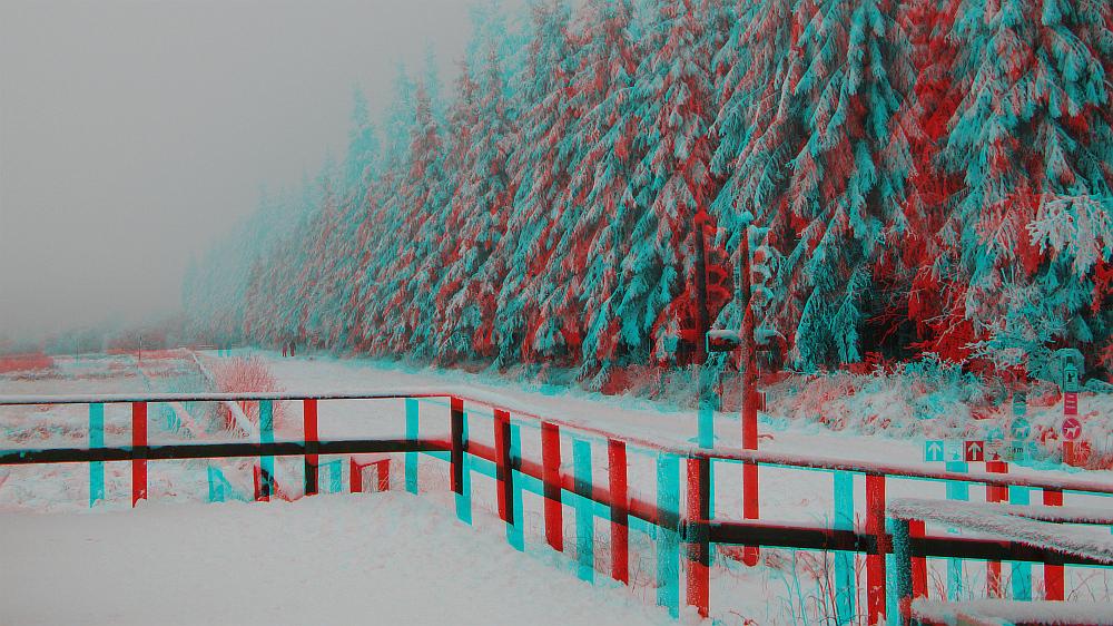 Winterspaziergang im Hohen Venn (3D-Bild)