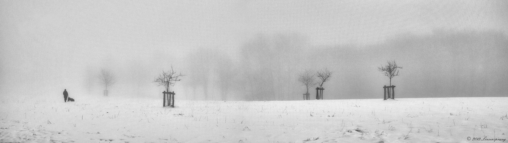 Winterspaziergang im Nebel