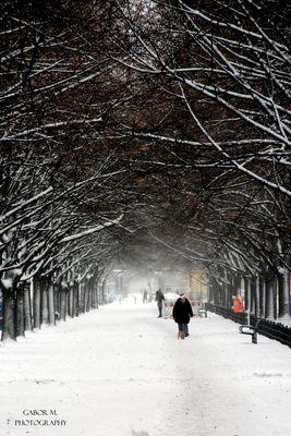 Winterspaziergang in Berlin - Mitte