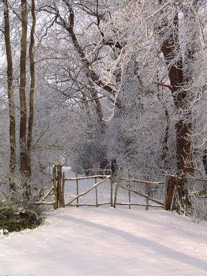 Winterspaziergang in Friesland