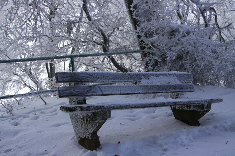Winterspaziergang kalte Bank