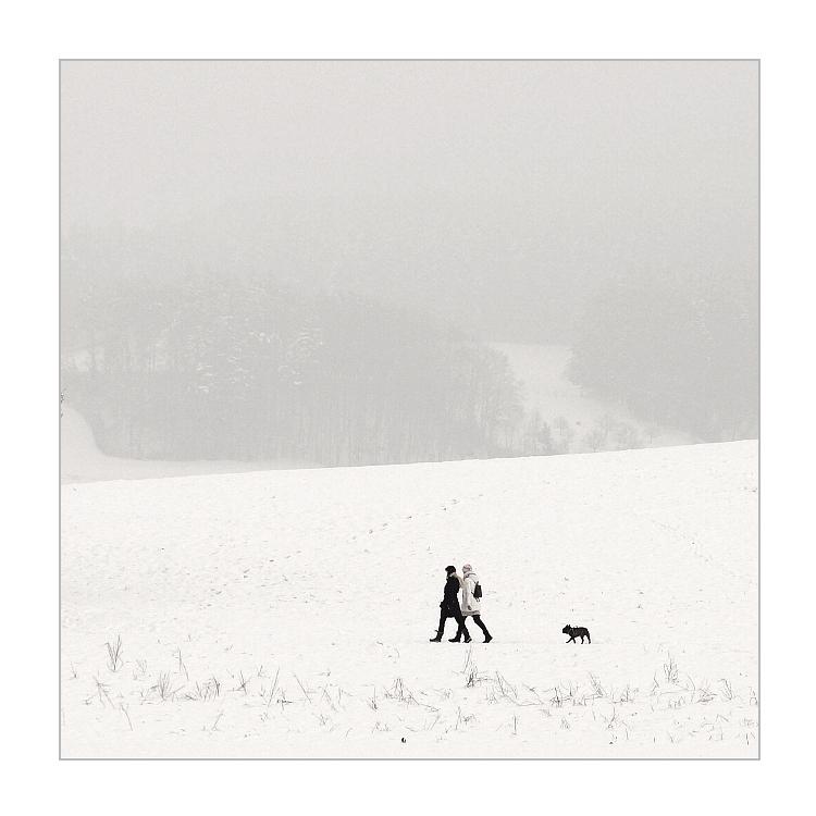 Winterspaziergang (neu)