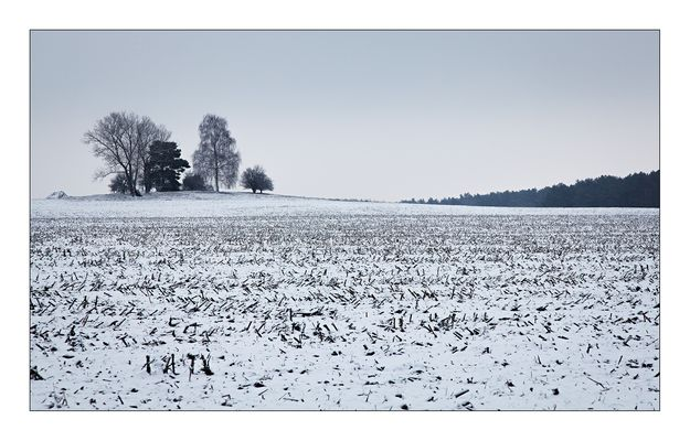 Winterspaziergang Teil 4