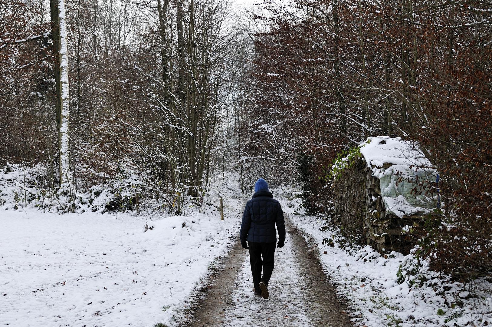 Winterspaziergang (überarbeitet)
