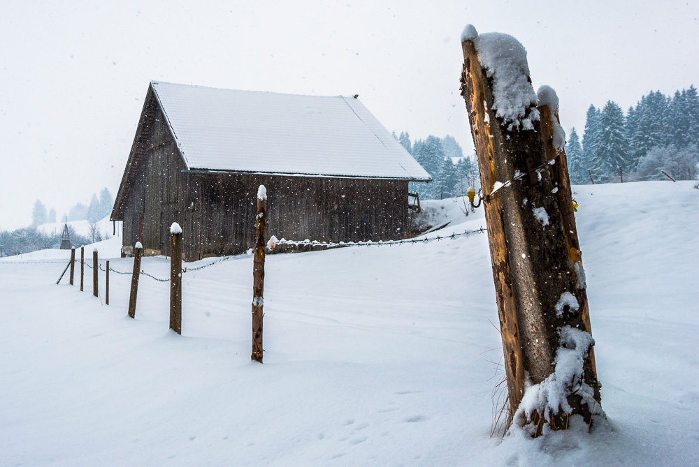 Winterspaziergang zu Ostern am Forggensee/Roßhaupten