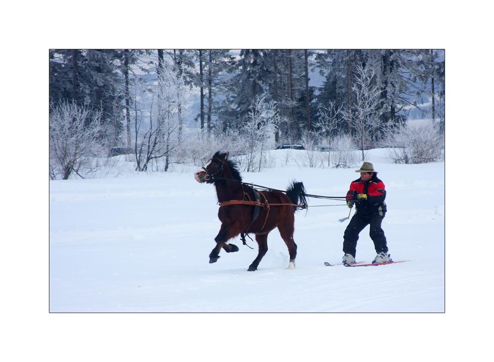 Wintersport mal anders