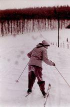 Wintersport um 1950 (10)
