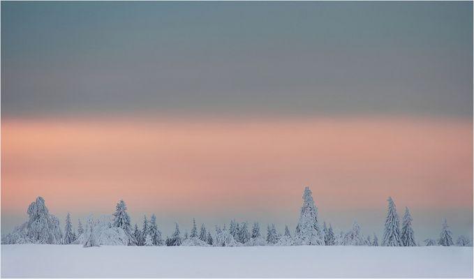 ~ Winterstille ~