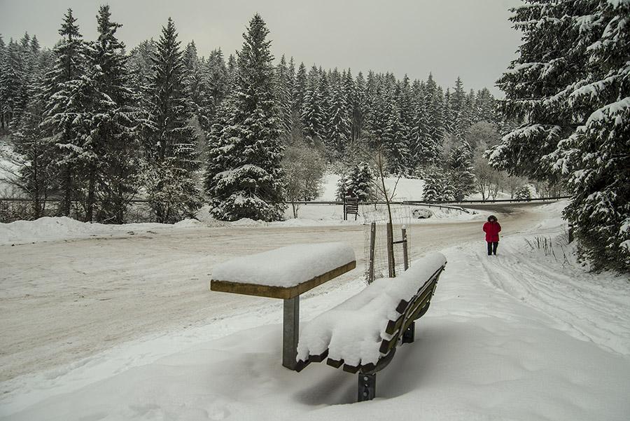 Winterstillleben
