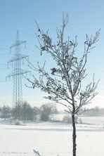 Winterstimmung -2-
