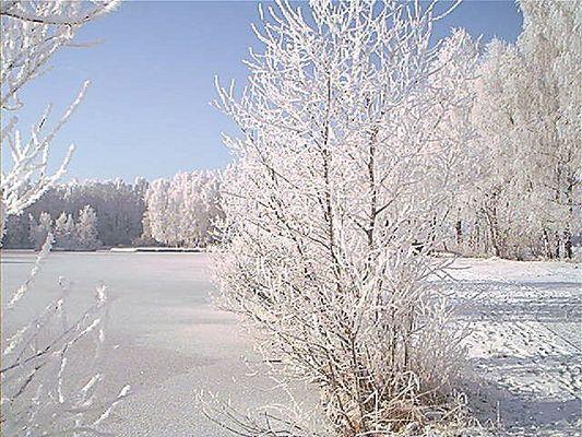 Winterstimmung am Birkensee