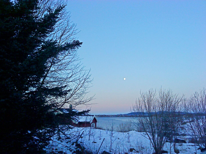 Winterstimmung am Fjord
