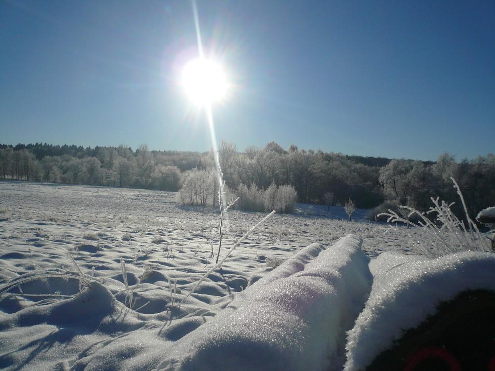 Winterstimmung am Möhnesee
