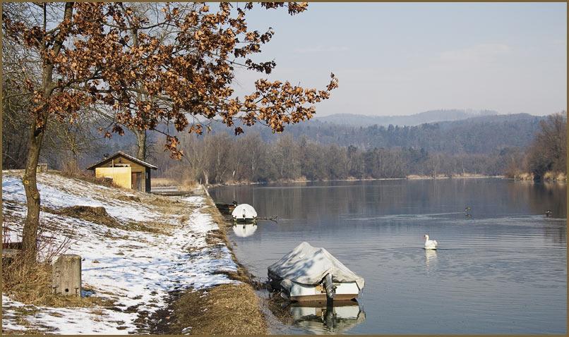 Winterstimmung am Rhein