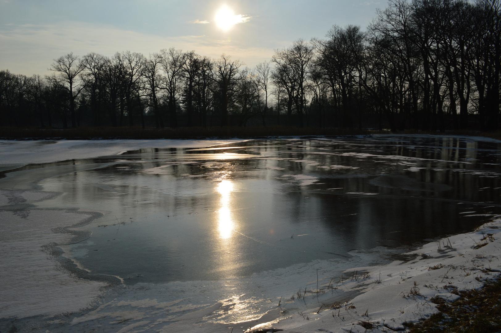 Winterstimmung am wörlitzer park
