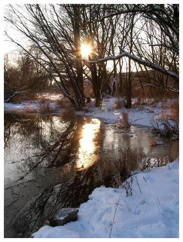 Winterstimmung an der Oder