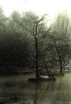 Winterstimmung an der Ruhr