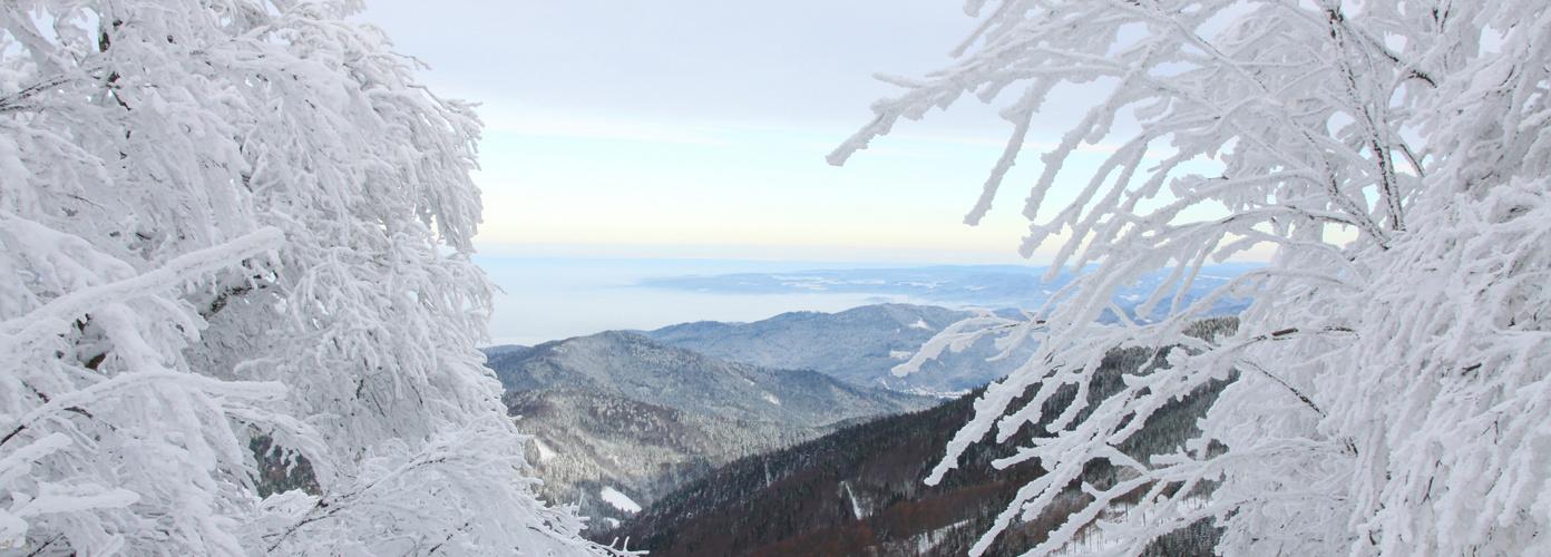 Winterstimmung auf dem Schauinsland
