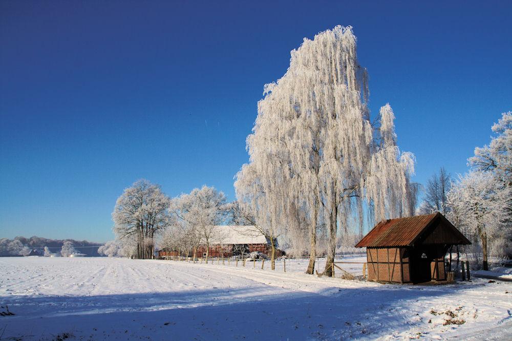 Winterstimmung in Einen
