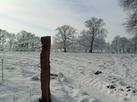 Winterstimmung in Friesland