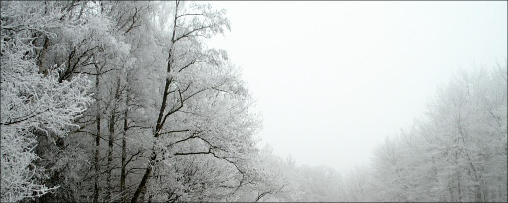 Winterstimmung in SW