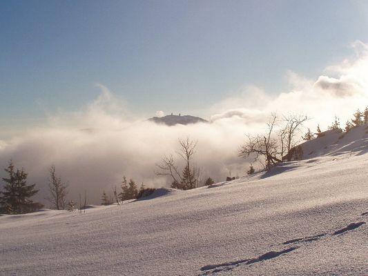 Winterstimmung mit Hochnebel und Sonne auf 1300 m