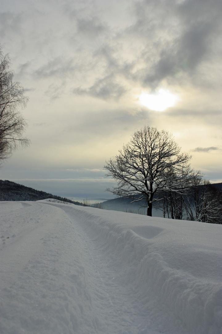 Winterstimmung2
