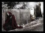 ...winterstory II...