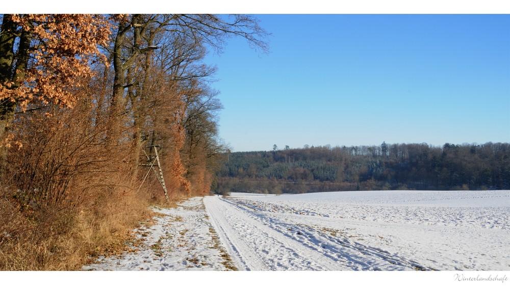 wintersuite (1)