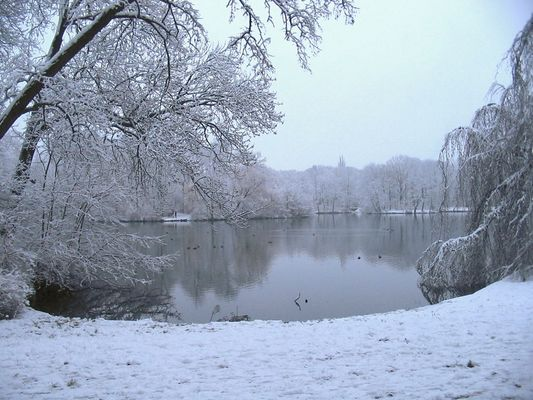 Wintersymphonie