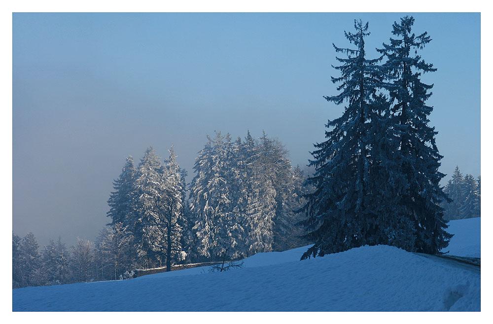 .Wintertag.