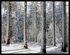 Wintertag 3