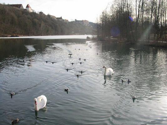 Wintertag am See