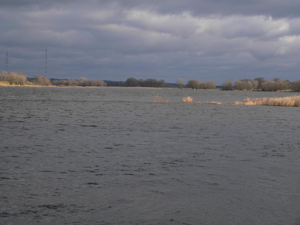 Wintertag an der Elbe