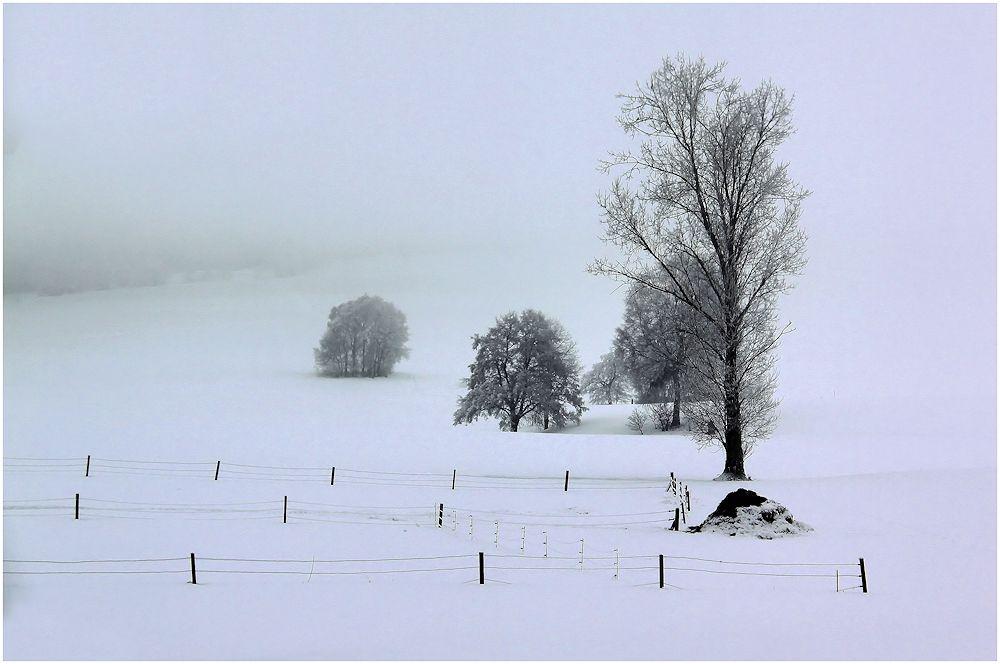 wintertag...