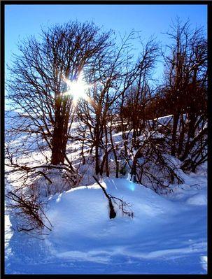 Wintertag beim Valsertal