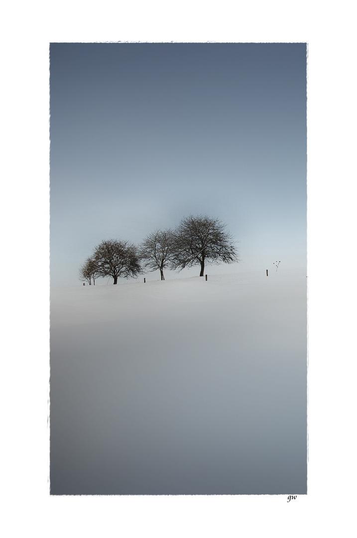 - wintertag -