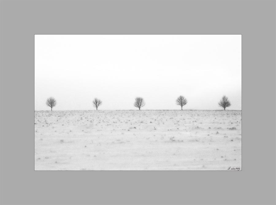 *Wintertag*