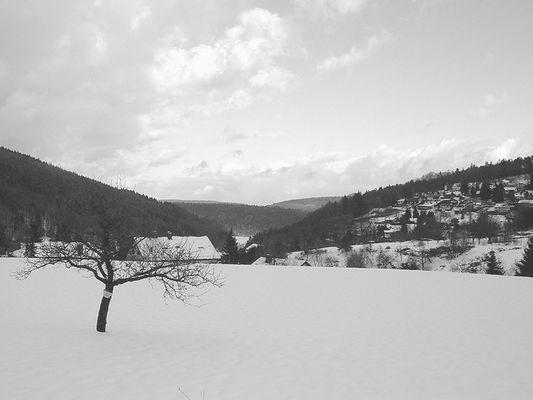 Wintertag im Odenwald