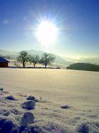 Wintertag zum Träumen