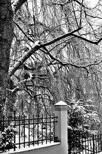 Wintertage im Januar 2