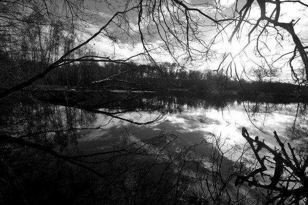 Wintertagen Moor
